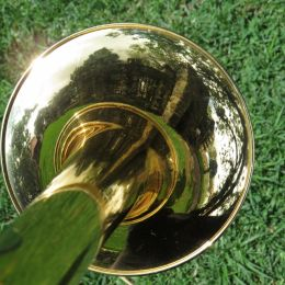 Trombonereflections