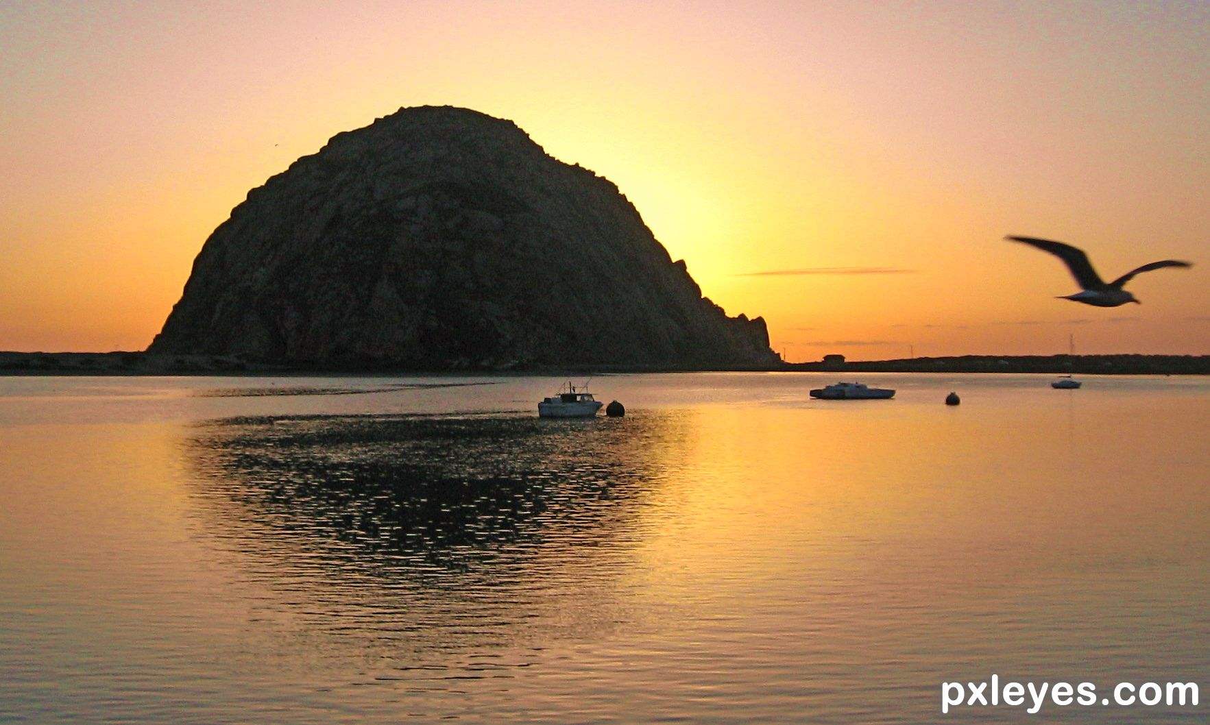 buddhist single women in morro bay Start meeting new people in morro bay with pof start browsing and messaging  more singles by registering to pof, the largest dating site in the world.