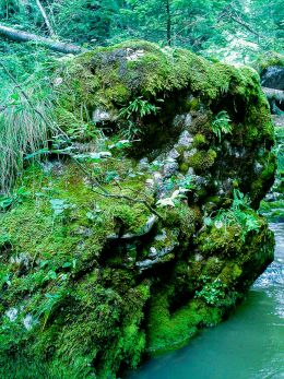 Lagoon rock
