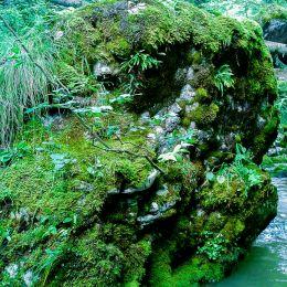 Lagoonrock