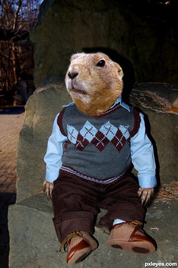 smart beaver