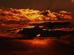 Sunny clouds. Picture