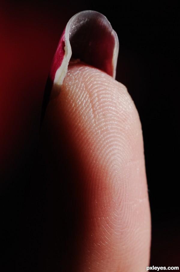 The Beauty of a Fingerprint