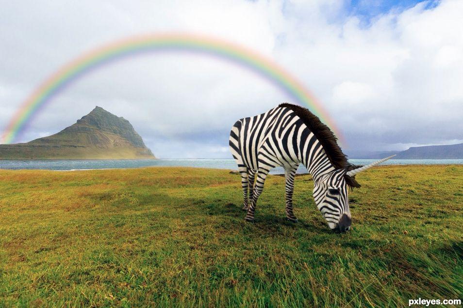 Rainbow and zebrunicorn
