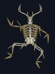 skull dancing