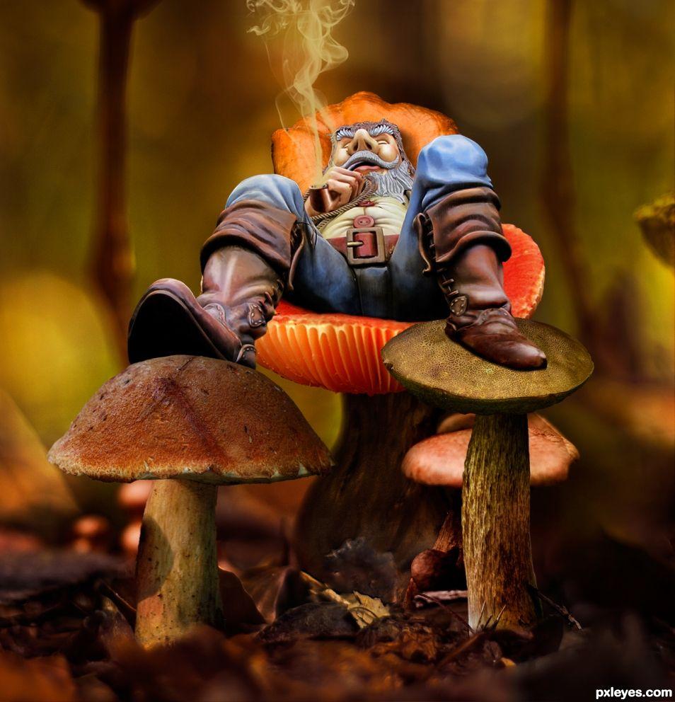 V3 - Relaxing on Some Mushrooms