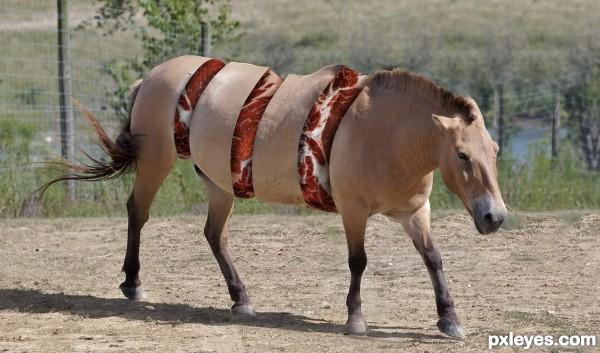 Horse Meat Walking