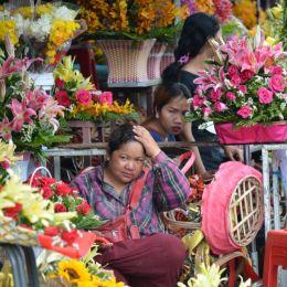 Flowershopatthemarket
