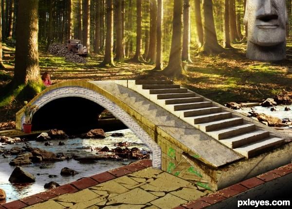 Stoneman Forest