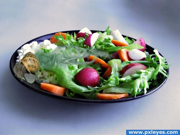 salad? again?