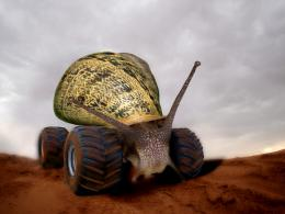 SnailBlazer