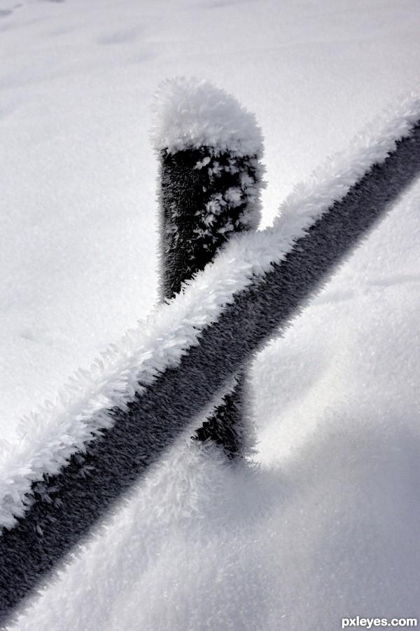 snowy fance