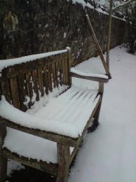 coldsnowybench