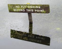No Fly Fishing...
