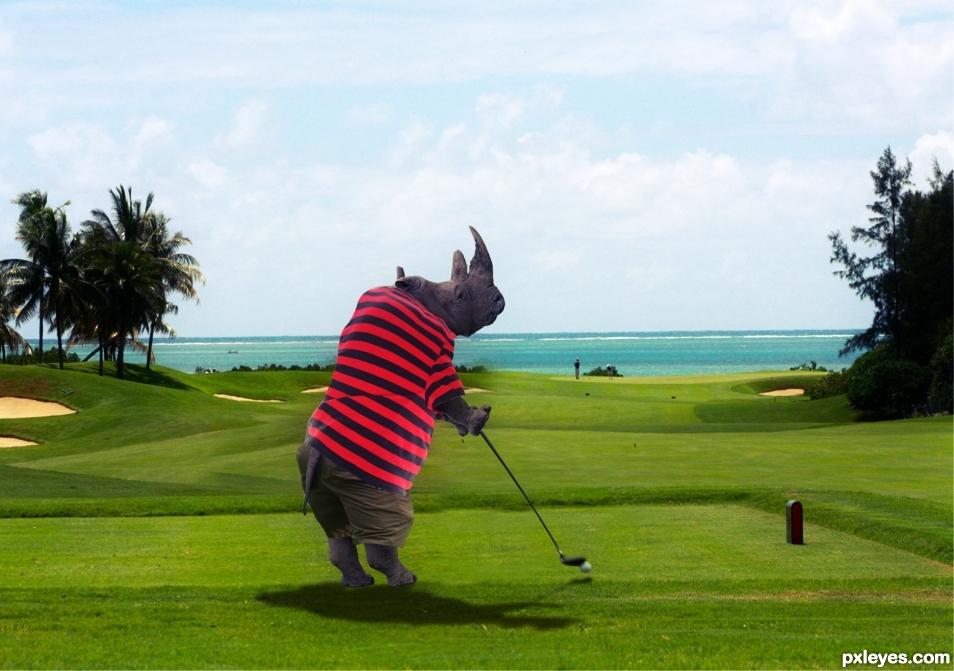 Golf Rhino