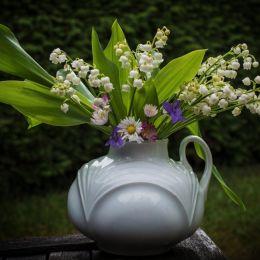 Lilyofthevalleydaisiesviolets
