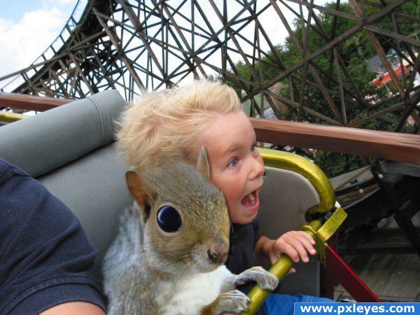 Coaster Squirrel