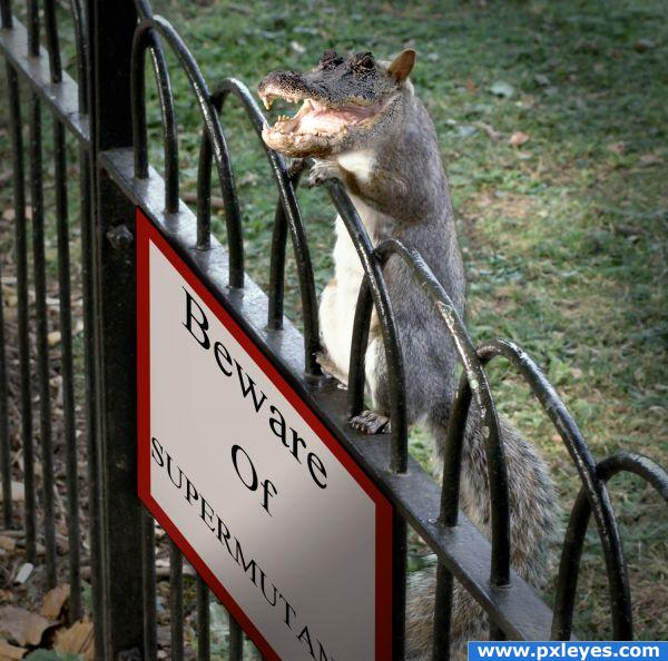 Not quite New York Zoo...