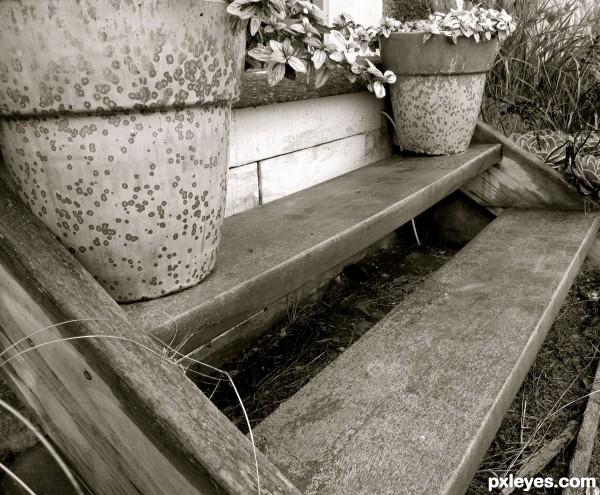 Farm stairs ...