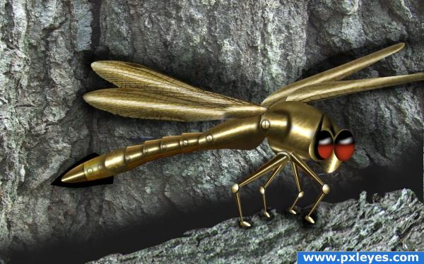 Armoured dragonfly