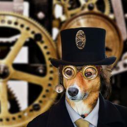 SteampunkMillionaireDog