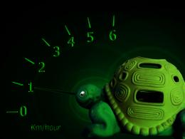 TurtleSpeed