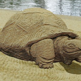 turtle sand sculpture Picture