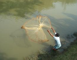 tocatchingfish
