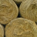 straw bales photoshop contest