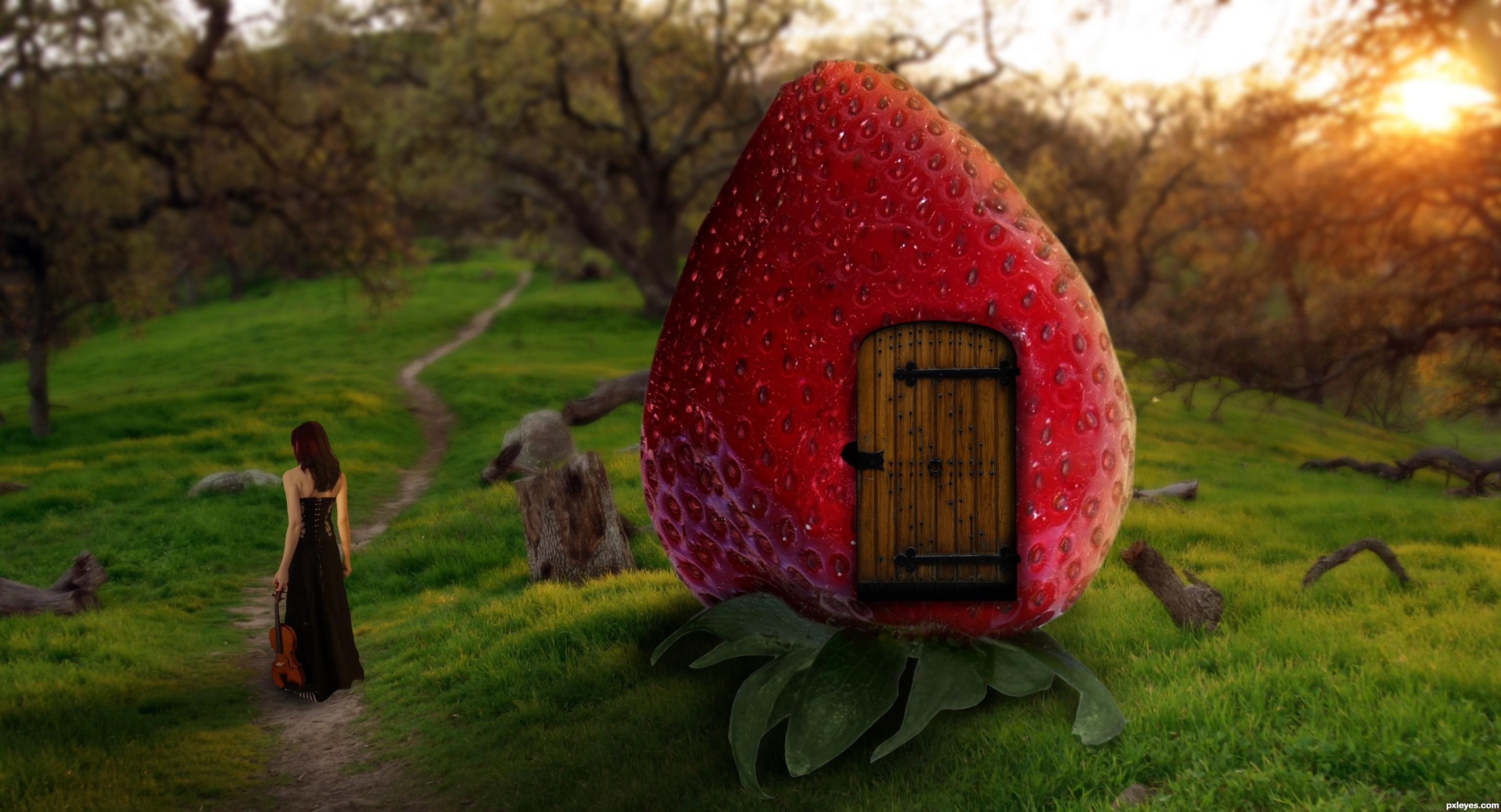 Gnome 4: Music Gnome Picture, By Blindscientist For: Strawberries