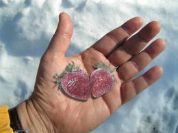 FrozenBerries