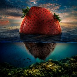 Strawberry Island Picture