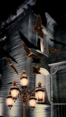 Bat Lamp Haunt