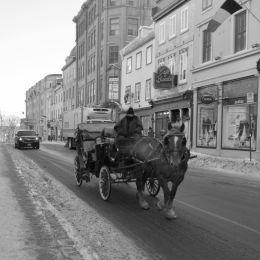 Horsecarriageinacoldstreet