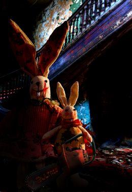 Rabbit blood