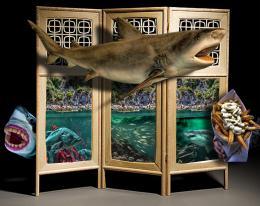 SharksBoatsFishandChips