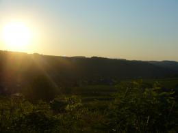 SunnyoverGrassyland