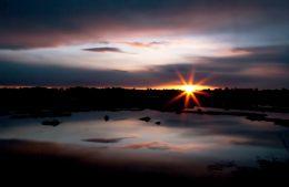 Soft dawn over a Maine Marsh