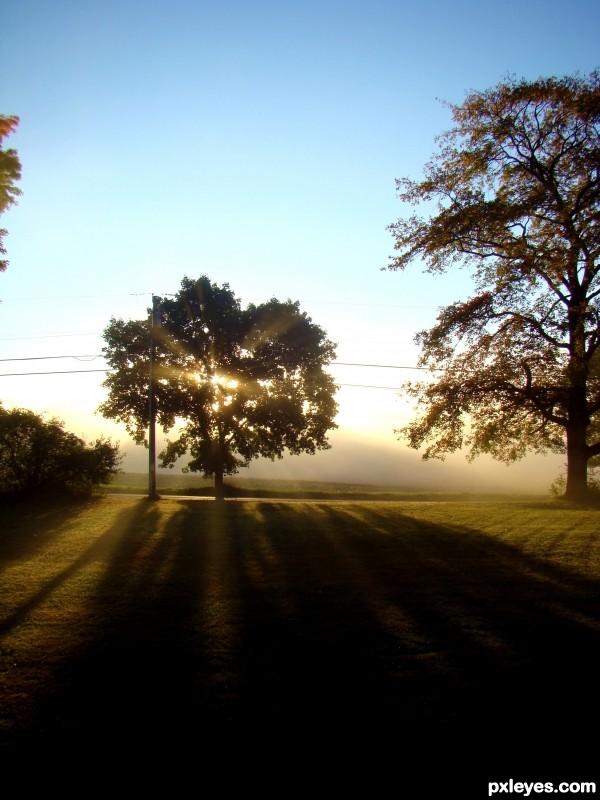 Misty Sunrise Flare