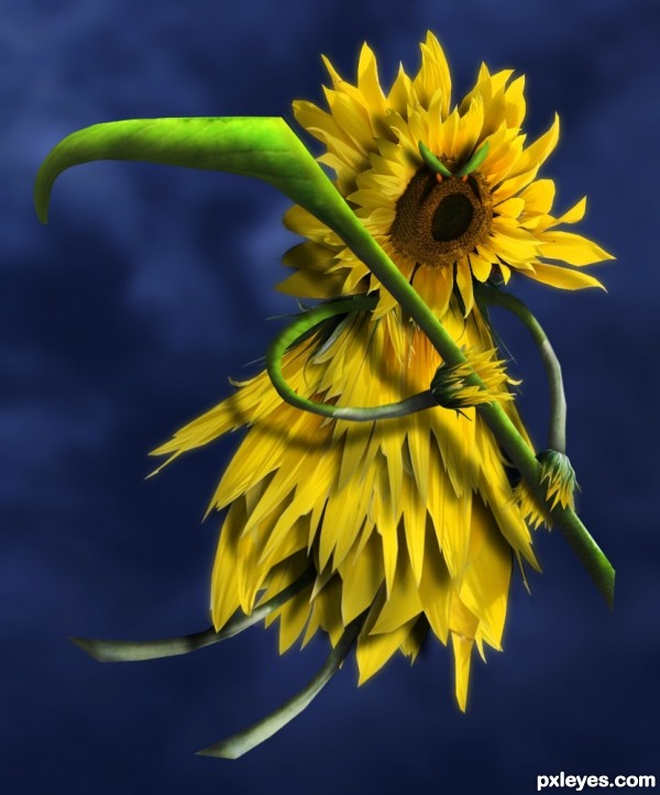 The Flower Reaper photoshop picture