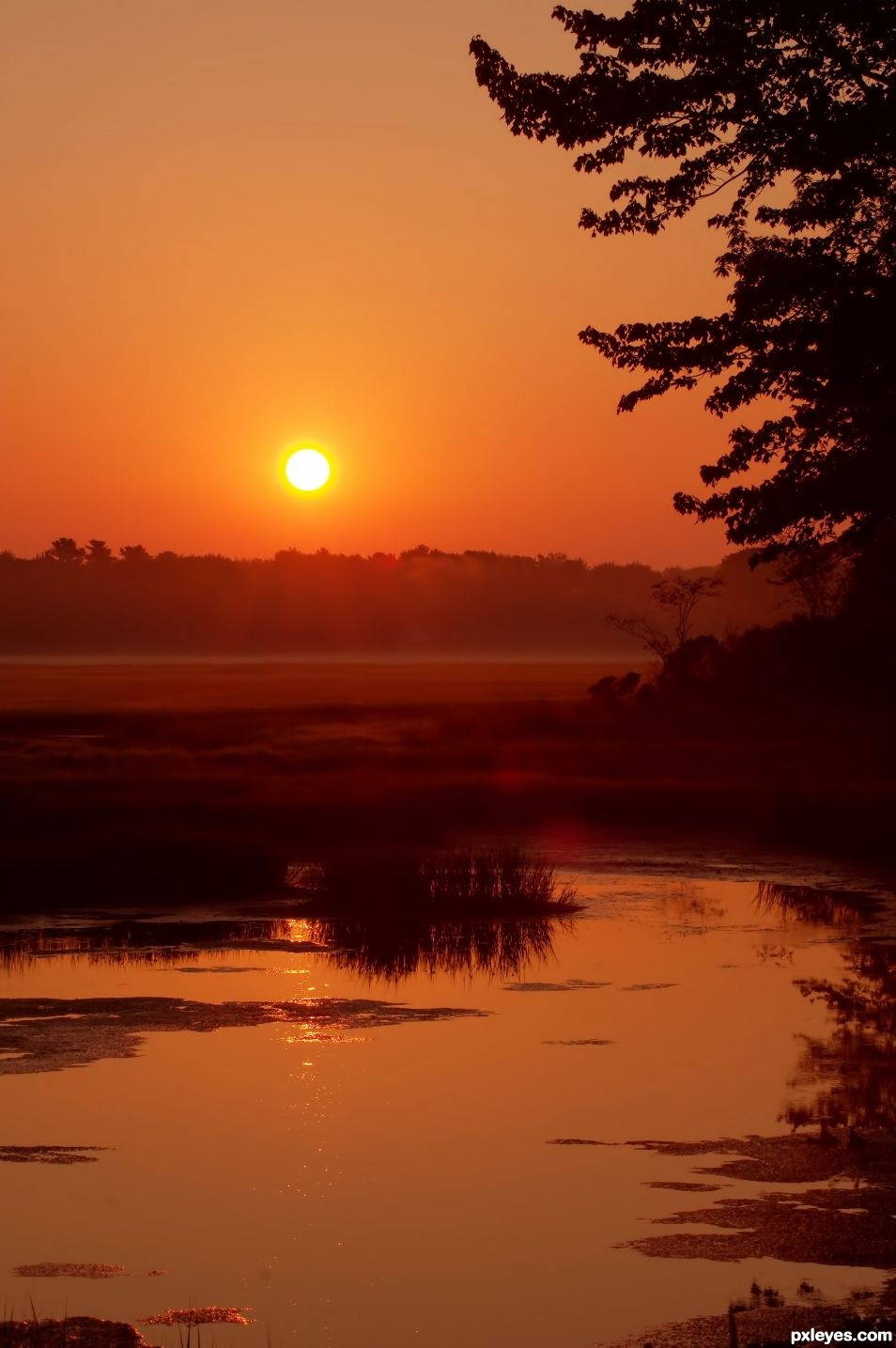 Sunrise Over a Salt Marsh