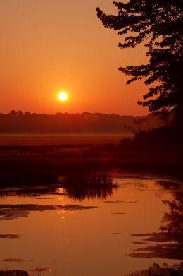 Sunrise Over a Salt Marsh