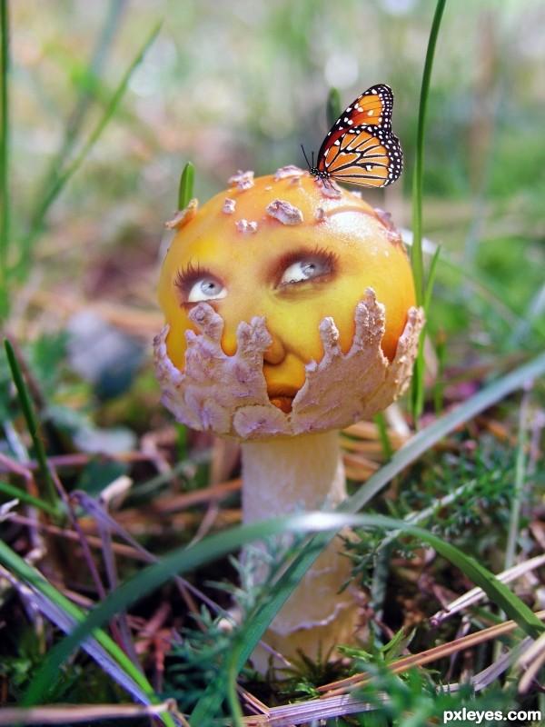 Shroom Head