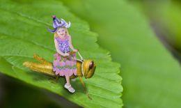 Grasshopper Ride