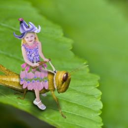 GrasshopperRide