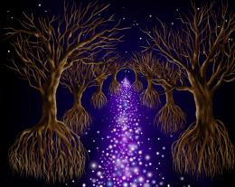 Treesbythestarlane