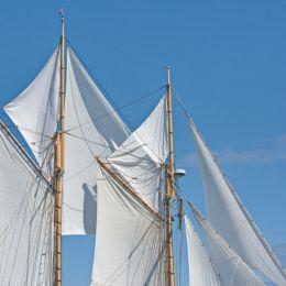 SailsintheWind