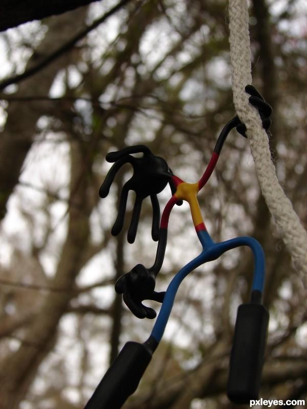 Swingin in the trees!