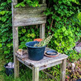 Gardeningisgodforthesoul