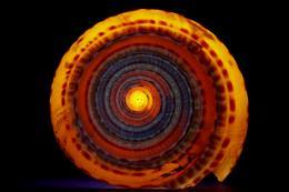SpiralSymmetry